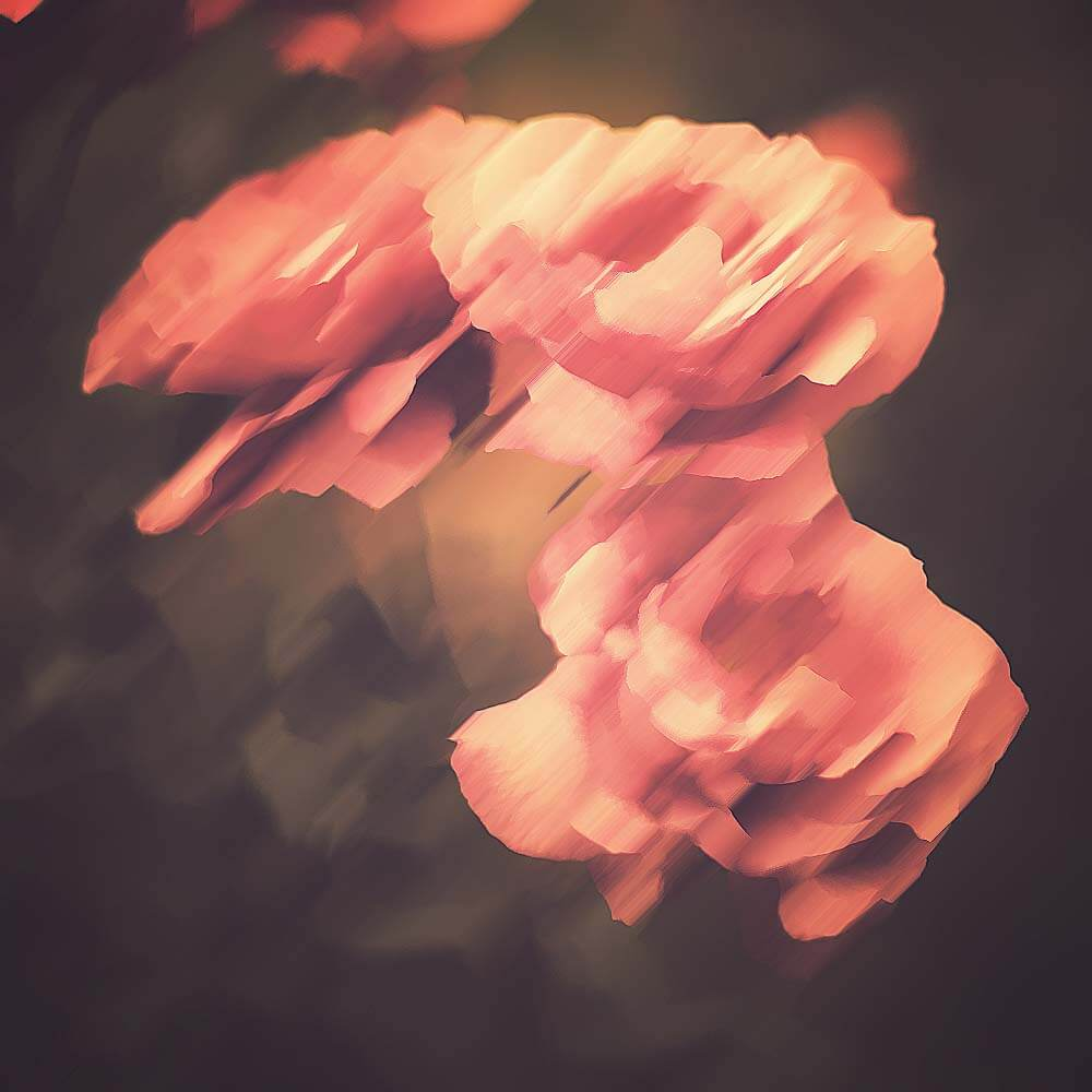 beautiful-vintage-flowers